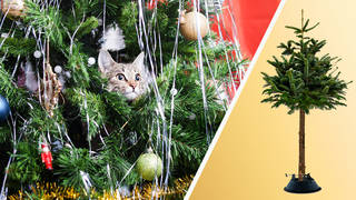 Sorry cats, your bauble-chasing days are numbered