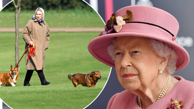 The Queen's dog has died