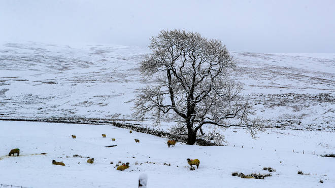 Snow could hit the South East of England by the end of the week