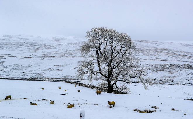 Much of the UK has already been hit by snow