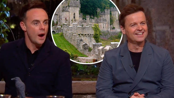 I'm A Celebrity could remain in the UK this year