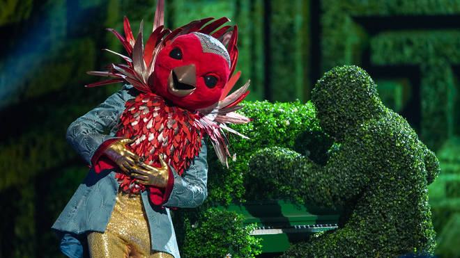 Robin is one of the contestants on The Masked Singer UK
