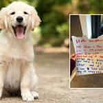 The adorable letter went viral on Reddit (left: stock image)