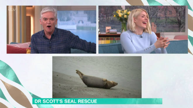 Holly and Phil were left in hysterics as the cameras zoomed in on the seal weeing