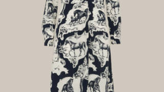 Holly Willoughby is wearing a Stallion print dress from Whistles
