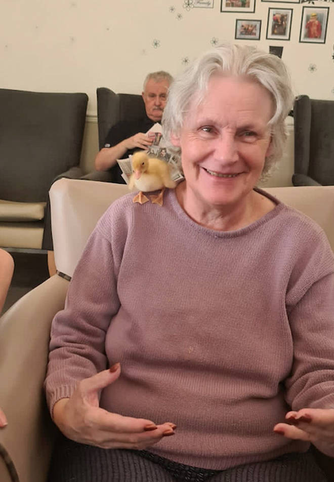 Staff have said that the little chicks and ducklings have bought the residents extreme happiness