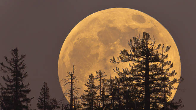 The Super Worm Moon will be bigger and brighter than usual