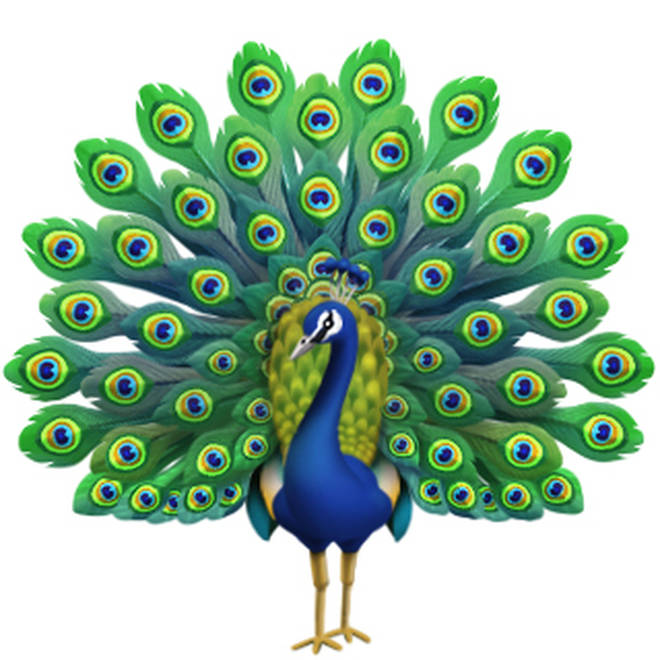 Not sure when we'll need this but its nice to know there's a peacock emoji just in case!