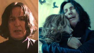 A Harry Potter fan has shared the theory on Twitter