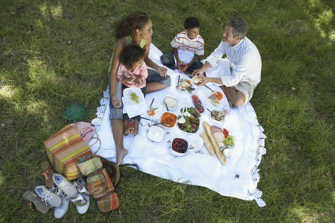 Picnics can be ruined by wasps