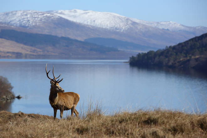 Loch Arkaig was used to form Dumbledore's final resting place