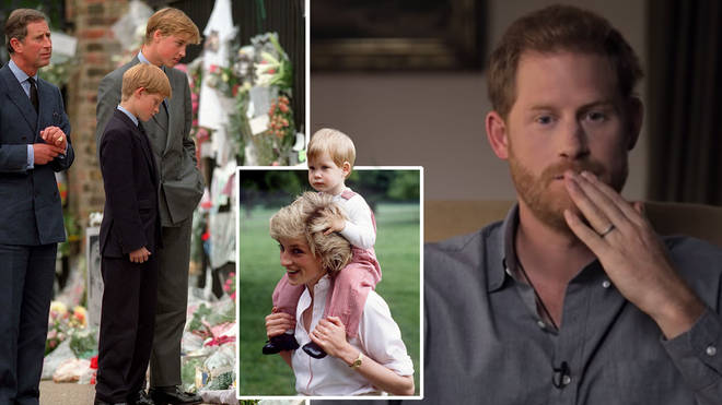 Prince Harry said that he did what was 'expected' of him at his mother's funeral