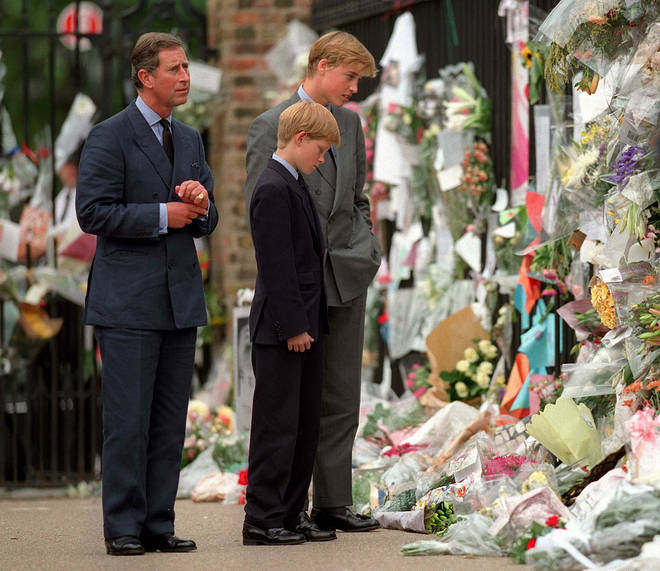 Prince Harry and Prince William had to walk behind Diana's coffin at the funeral