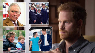 Prince Harry interview: Everything the Duke of Sussex said in new mental health programme