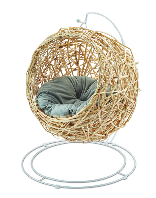 Aldi's cat Egg Chair is on sale from May 23