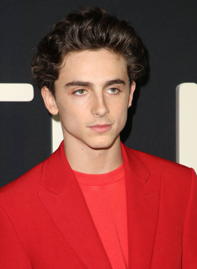 Timothée Chalamet is known for his roles in films like Call Me By Your Name and Ladybug
