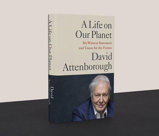 David Attenborough's witness statement on climate change and the devastation of the natural world