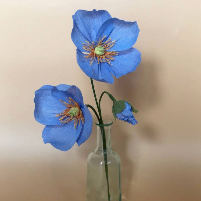 Leo Flowers are made from paper and last longer than freshly-cut flowers