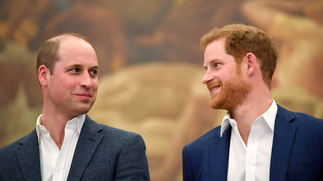 Harry and William have been working together on this project for almost four years