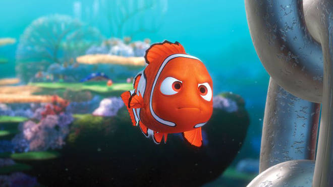 The theory claims Nemo is dead and Marlin is searching for 'no one'