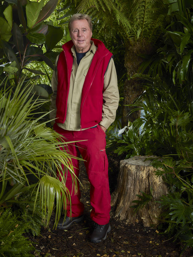 Harry Redknapp is heading into the I'm A Celeb jungle