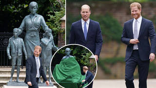 Prince Harry and Prince William reunited for the revealing of the Diana statue