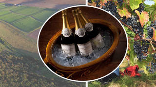 British wine is delicious and right on our doorstep