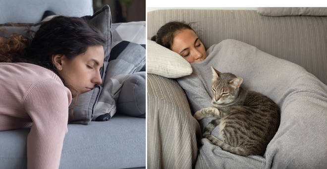 A new study has found that people may be more genetically prone to napping (stock image)