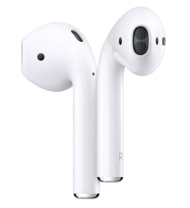 Apple Earbuds with charging case