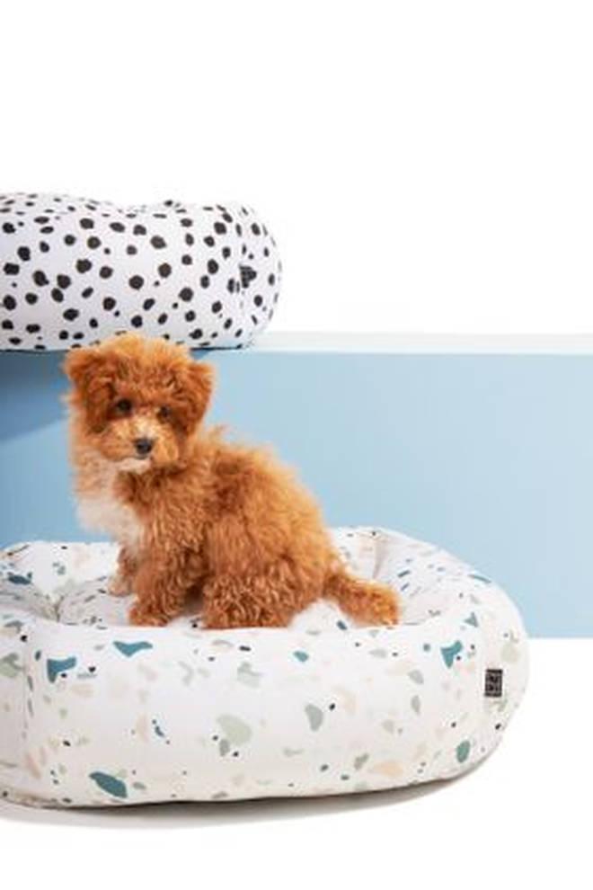 Settle has a range of dog beds in trendy patterns, like terrazzo