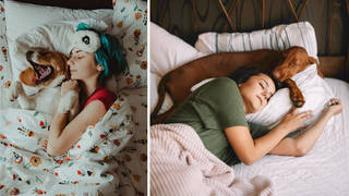 Women sleep better next to their dogs than their partners, new research has revealed