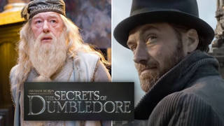Jude Law will return as a young Dumbledore in the next Fantastic Beasts film