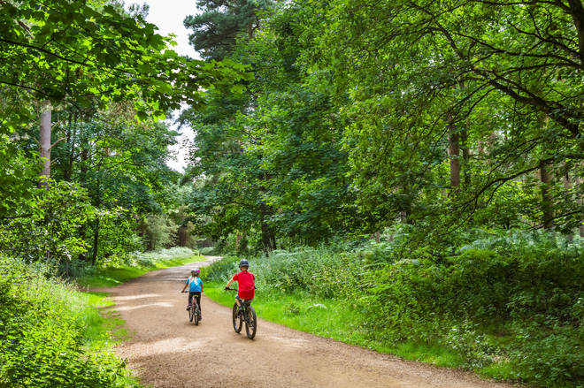 Try to walk and cycle places with your children