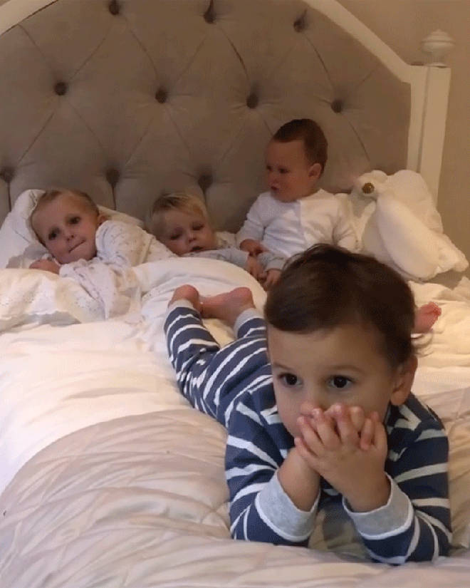Baby Paul, Nellie, Rosie and Arthur are the stars of the show