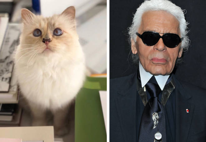 Karl Lagerfeld has died aged 85