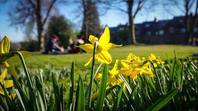 The Spring Equinox, also know as the Vernal Equinox or the March Equinox, marks the first official day of spring.