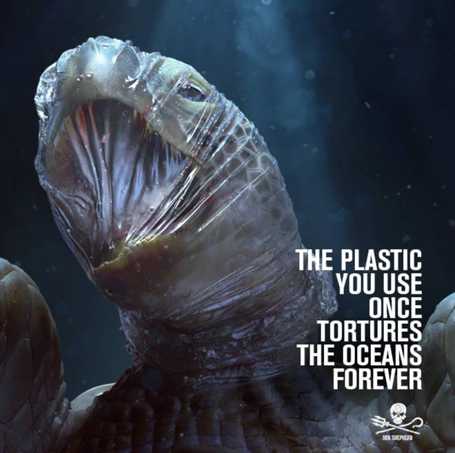 "The an ocean conservationist group dedicated to protecting marine wildlife says ""if the oceans die, we die""."