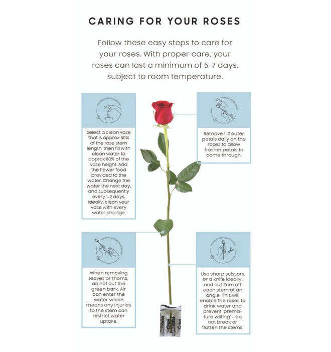 These easy tips will keep your roses looking lush for longer