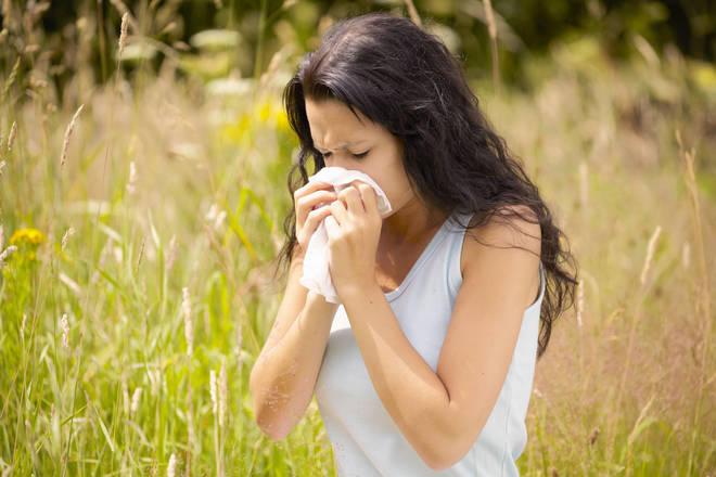Experts have warned that hayfever season is arriving early this year (stock image)