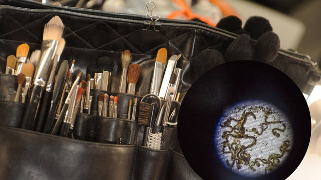 If you're not cleaning your brushes regularly there could be bugs living in them