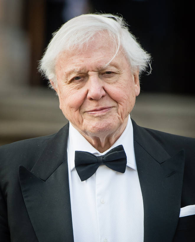 David Attenborough has urged the public to tackle climate change in his new documentary