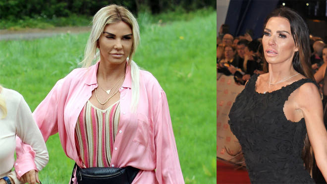 Katie Price has undergone a third facelift - leaving her unrecognisable