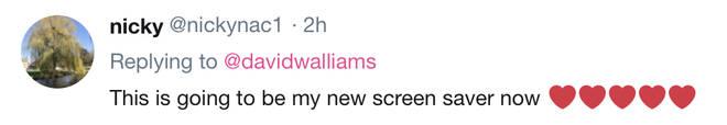 Nicky nabbed a new screensaver