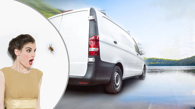 The woman was so terrified by the spider she let her van roll into the water