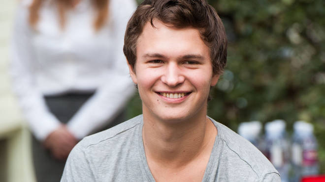 The Fault in Our Stars actor Ansel Elgort will play Theo in the Pulitzer prize-winning adaptation.
