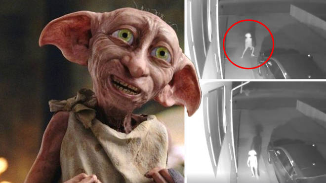 Has Dobby come back from the dead?