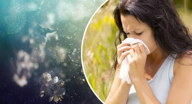 Hay fever season is back...