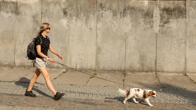 Save dog walking for early morning or late afternoon.