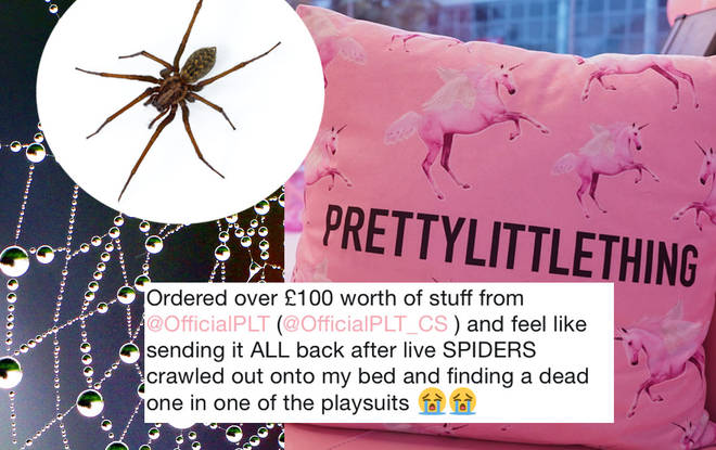 PLT shopper Georgia was horrified to find the spiders in her order