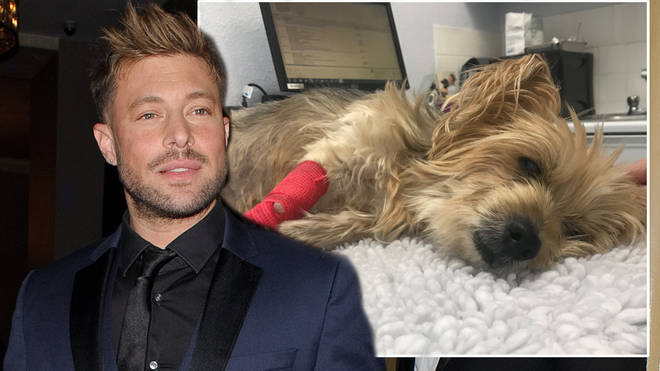 Duncan James announced his dog had tragically died